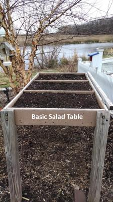 labelled salad table