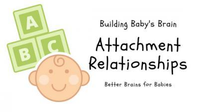building baby s brain