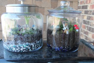Photo-1 Finished Fairy-Terrarium