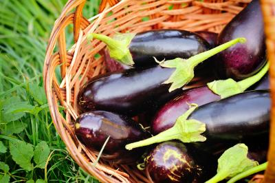 bigstock-Fresh-Eggplant-In-Basket-On-smaller