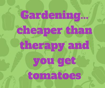 Gardening  Cheaper Than Therapy and You Get Tomatoes  1