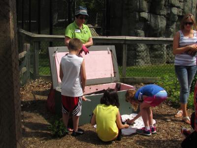 Children garden compost