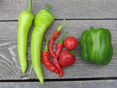 Dean Garden Peppers
