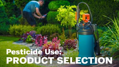2 intro product selection