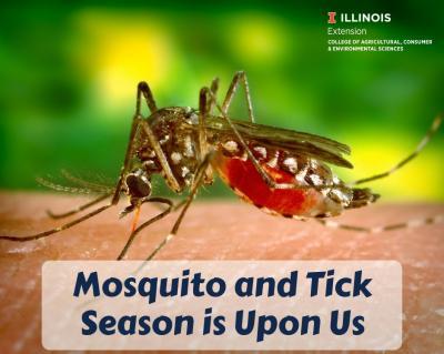 MosquitoandTick