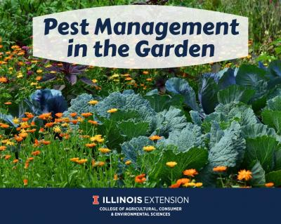 PestManagementintheGarden