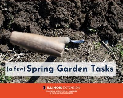 a few Spring Garden Tasks