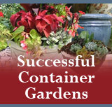 Successful Container Gardens