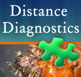 Distance Diagnostics