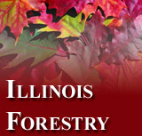 Illinois Forestry