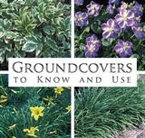 Groudcovers to Know and Use