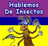 Hablemos de Insectos