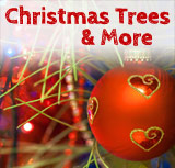Learn all about Christmas trees, as well as a listing of Christmas tree farms in Illinois, Indiana, Wisconsin and Michigan.