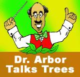 Dr. Arbor Talks Trees