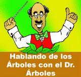 Hablando de los Árboles con el Dr. Árboles