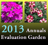 Annuals Evaluation Garden