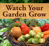 Watch Your Garden Grow