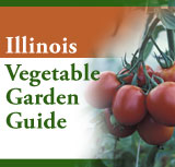 A guide for growing, harvesting, and exhibiting vegetables.