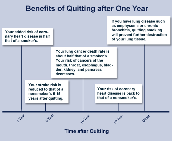 benefits of quitting - you can be smoke free - univeristy of, Skeleton