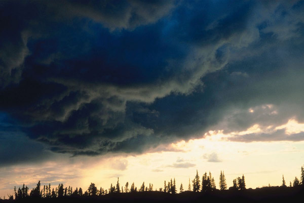 Nimbus, Cumulonimbus, Nimbostratus, and Fog - Tree House Weather ...