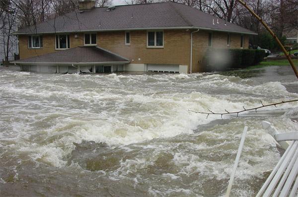 Floods Tree House Weather Kids University Of Illinois
