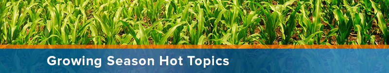 Growing Season Hot Topics