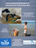 Keep Unwanted Medications & Chemicals Out of the Great Lakes