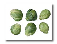 how to grow brussel sprouts in illinois