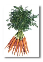 Carrot - Vegetable Directory - Watch Your Garden Grow - University ...