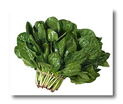 Image result for images of spinach