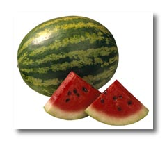 Watermelon - Vegetable Directory - Watch Your Garden Grow ...